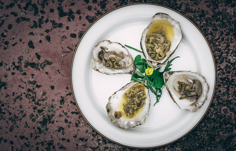 Sirocco-South-oysters-1
